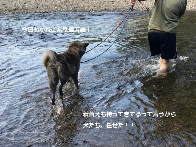 曼珠沙華まつりと川遊び♪_f0242002_11113079.jpg