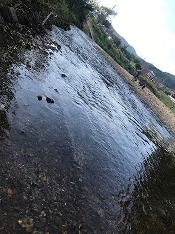 曼珠沙華まつりと川遊び♪_f0242002_11120803.jpg