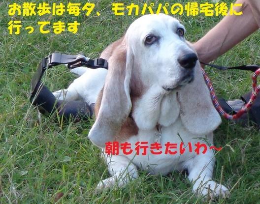 f0121712_00054908.jpg