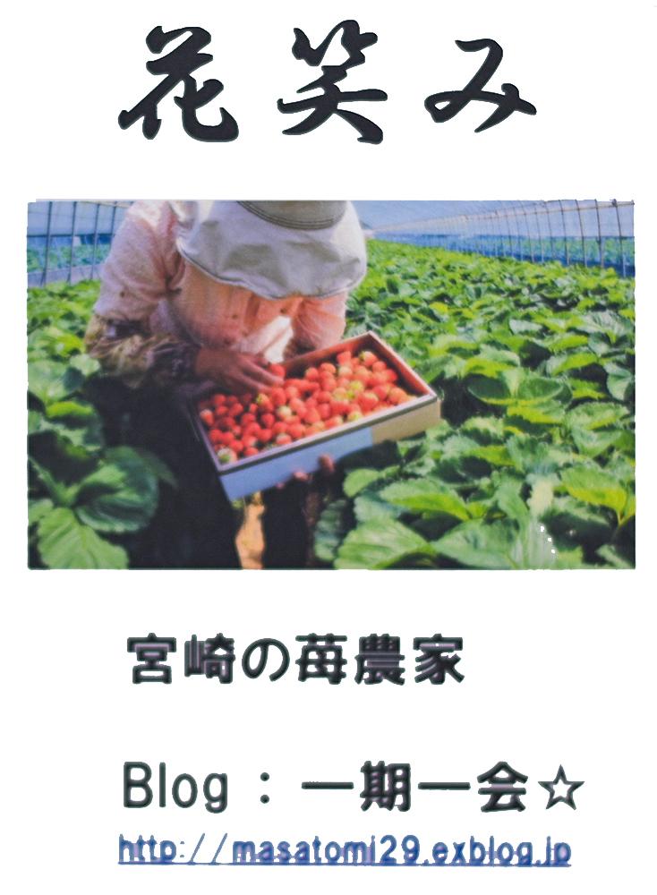 一期一会☆さんのお花畑_d0265224_21224786.jpg