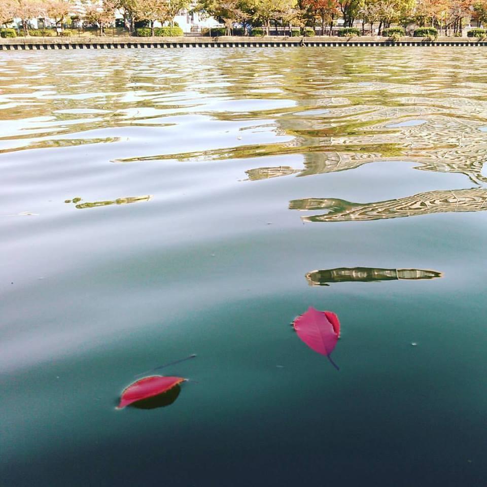 秋の「舟×読」 本を読んだら舟に乗る。舟に乗ったら本を読む。_a0137142_11025218.jpg