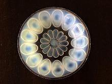 クリスタル・ガラス製品_f0112550_07331765.jpg