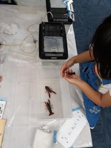 9月8日(日)のげ青縁日で多摩川水族館やりました!_c0120851_10123113.jpg