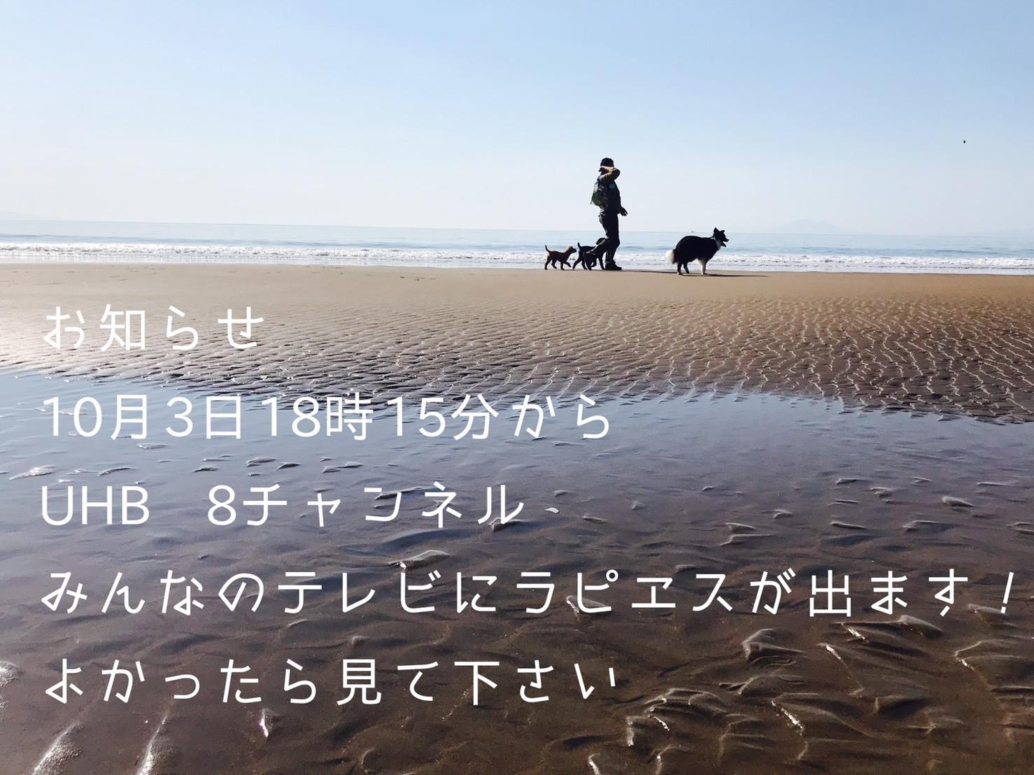 b0347452_12332260.jpg
