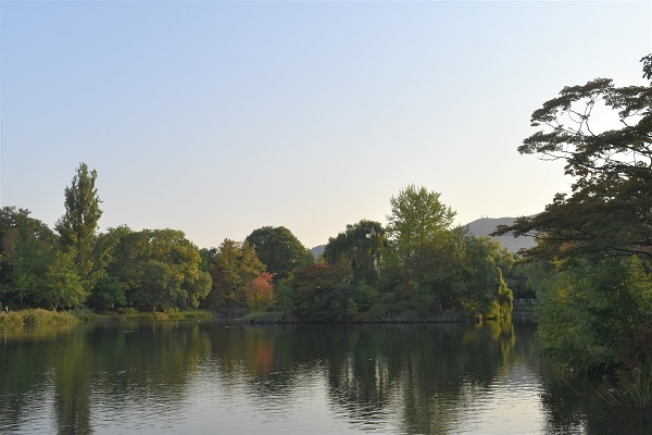 札幌市中島公園で秋を探してきました。_f0362073_11541891.jpg