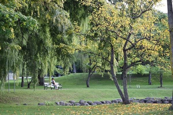 札幌市中島公園で秋を探してきました。_f0362073_11561111.jpg