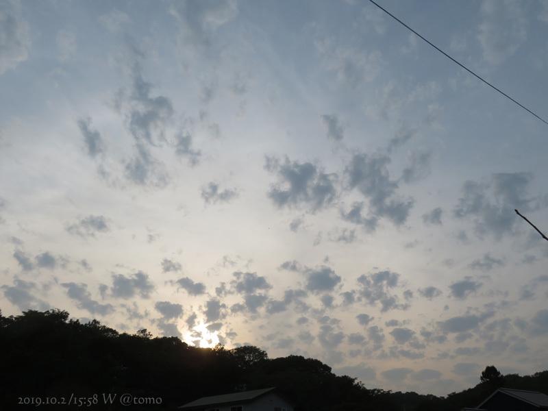 ヒメアカタテハ_f0067179_20510072.jpg