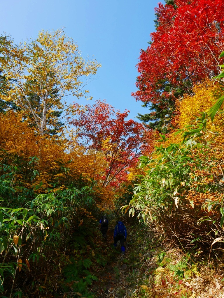 紅葉が見頃の無意根山、2019.10.2ー速報版ー_f0138096_17153897.jpg