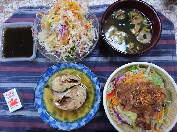 10/3 アサヒヘルシースタイル & 自家製牛丼ライト @自宅_b0042308_23410145.jpg