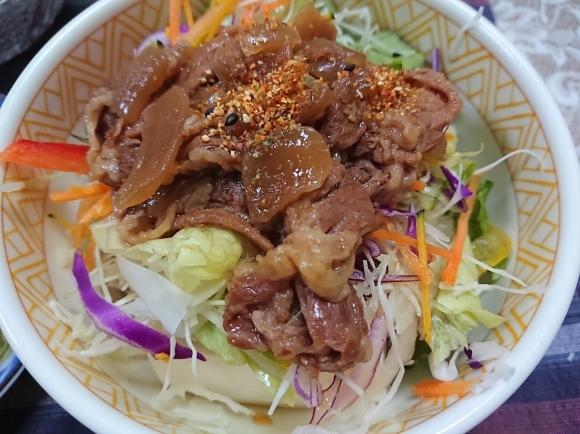 10/3 アサヒヘルシースタイル & 自家製牛丼ライト @自宅_b0042308_23410210.jpg