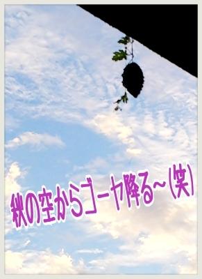 番外編かな??「くるナイ」ワタシ 長友仍世の写真館!_b0183113_17323593.jpg
