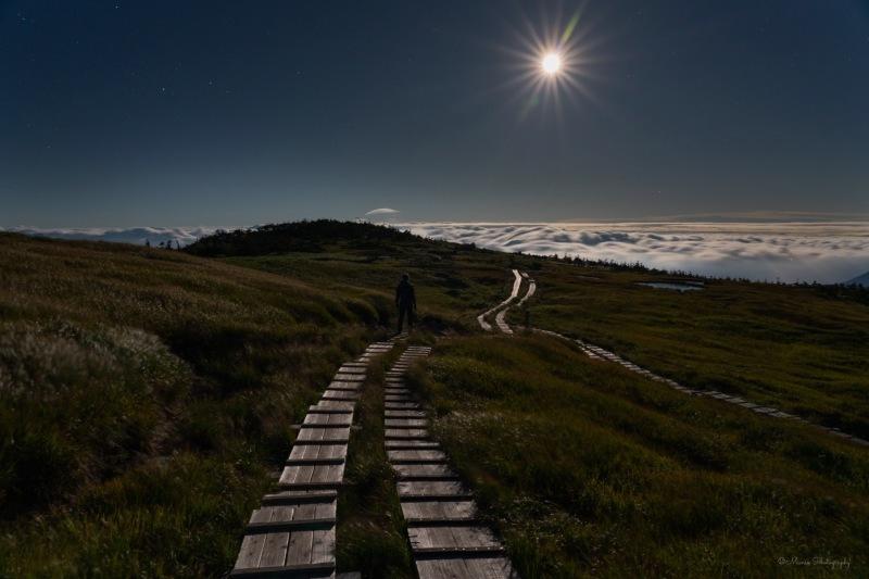 月夜の夢_f0321522_20074665.jpg