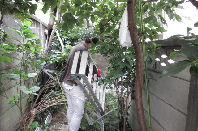 目黒区「コーポA」台風災害復旧工事。_a0214329_1613420.jpg