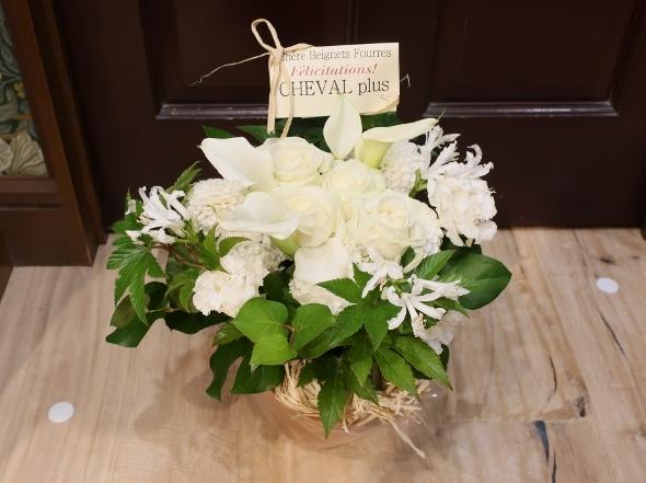 ベニエフレェ店にお祝いのお花をいただきました。_c0227633_23020821.jpg