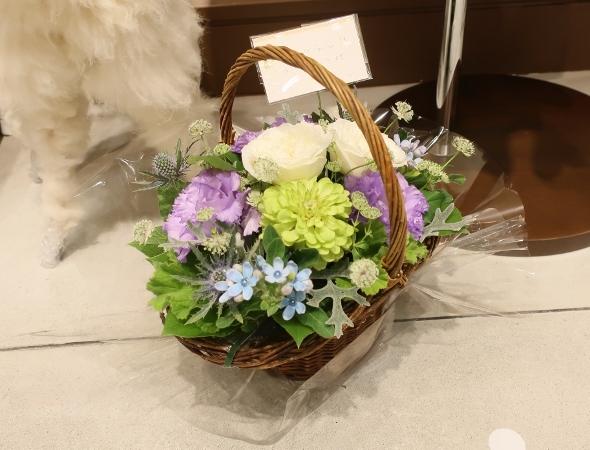 ベニエフレェ店にお祝いのお花をいただきました。_c0227633_23045849.jpg