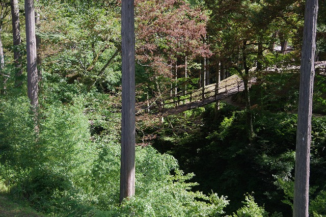 秋の福井の旅 龍双ヶ滝とかずら橋_d0043136_12302792.jpg