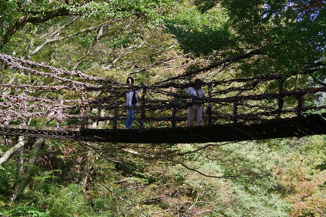 秋の福井の旅 龍双ヶ滝とかずら橋_d0043136_12334249.jpg