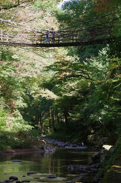 秋の福井の旅 龍双ヶ滝とかずら橋_d0043136_12335569.jpg