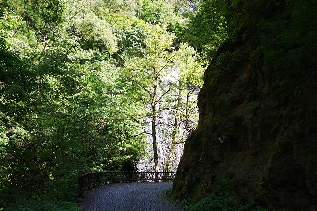 秋の福井の旅 龍双ヶ滝とかずら橋_d0043136_1275136.jpg
