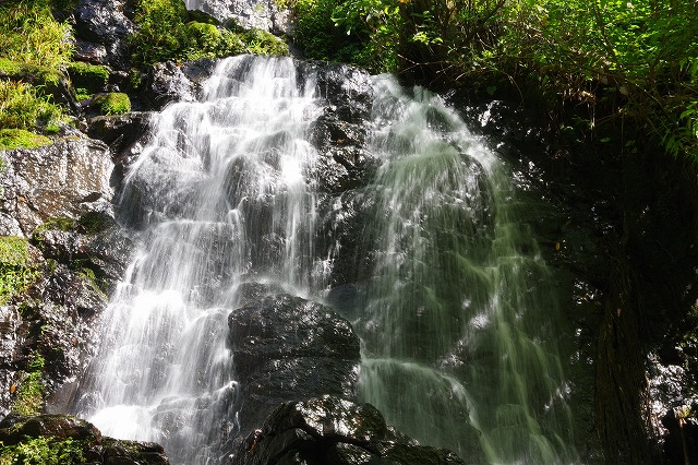 秋の福井の旅 龍双ヶ滝とかずら橋_d0043136_1295545.jpg
