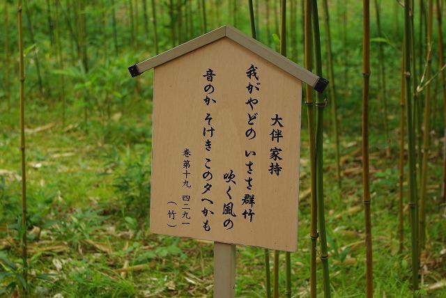 秋の福井の旅 万葉の里 味真野苑_d0043136_1982129.jpg
