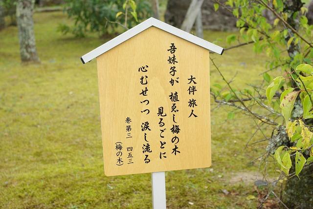 秋の福井の旅 万葉の里 味真野苑_d0043136_199065.jpg