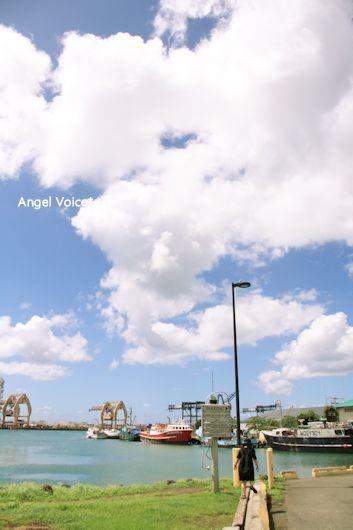FF in Hawaii@フリータイム_d0147742_20414219.jpg