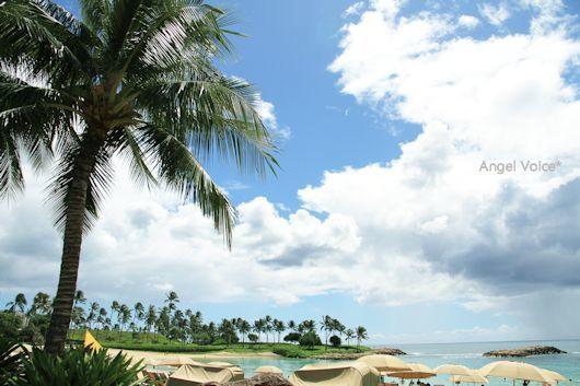 FF in Hawaii@ホテル散策_d0147742_20455059.jpg