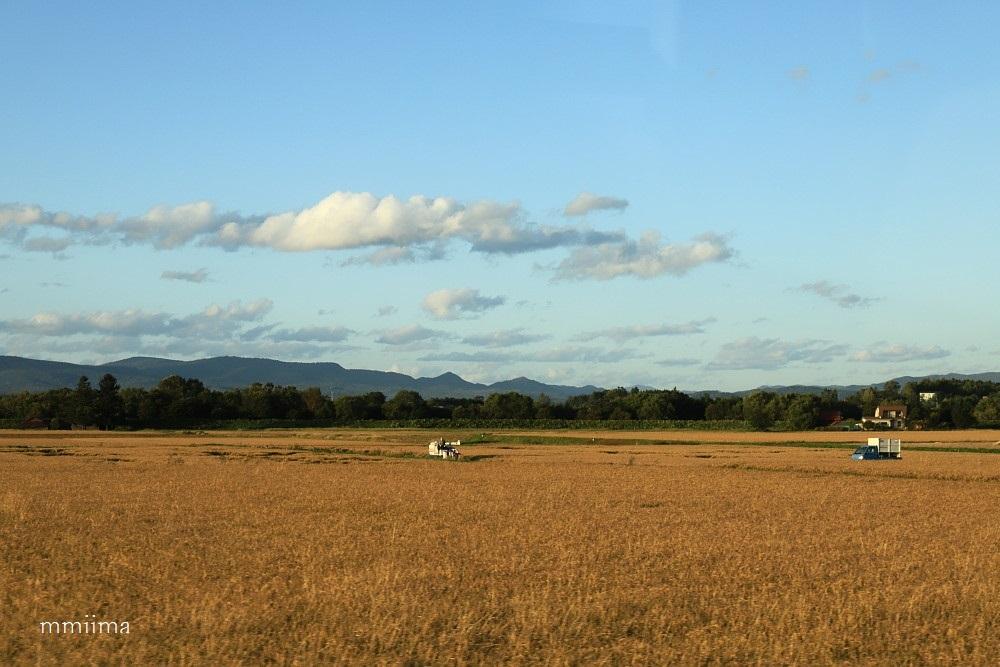 北海道の旅・・車窓から_f0131611_05042069.jpg