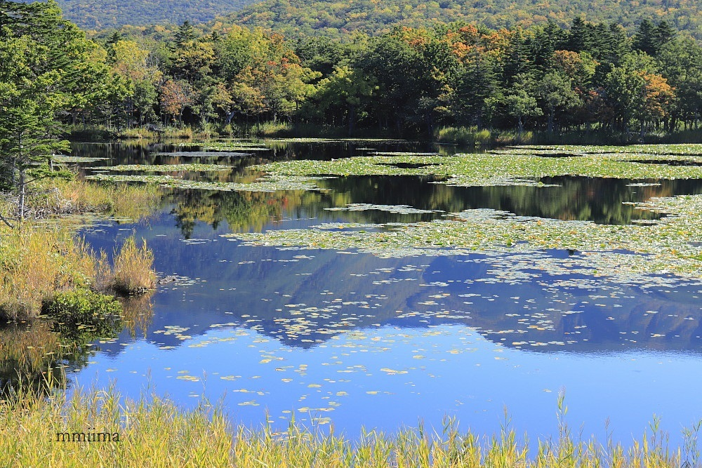 北海道の旅・・湖_f0131611_05054597.jpg