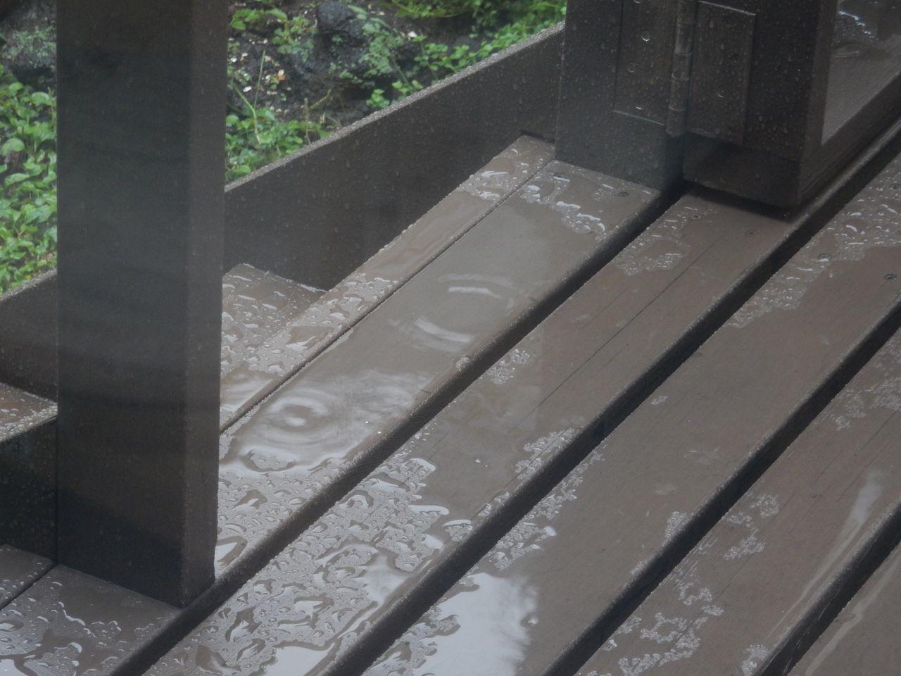 ほぼ雨でした_c0025115_22290169.jpg