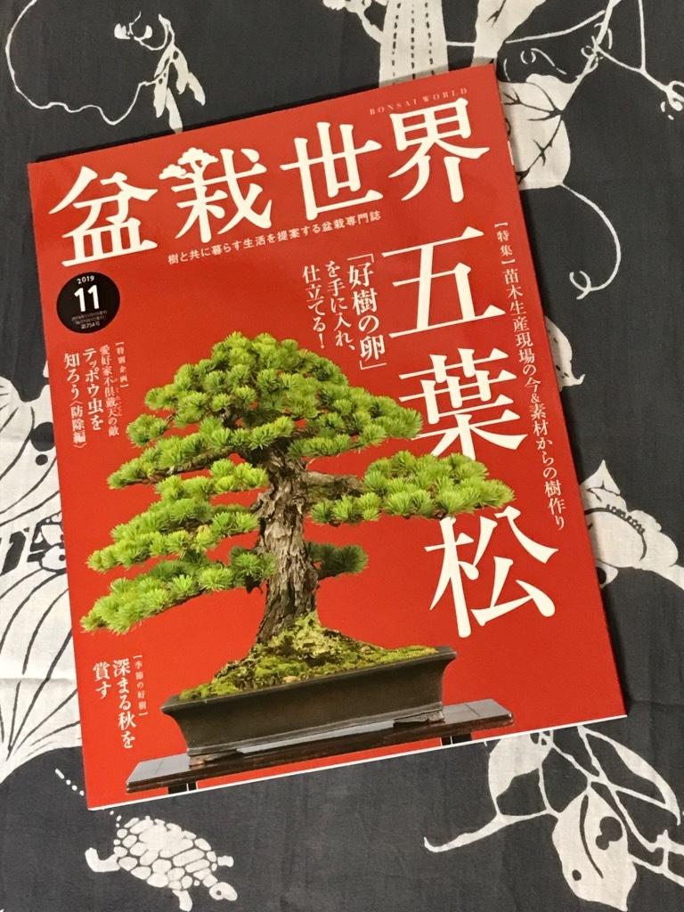 盆栽世界11月号_f0170915_14191208.jpg