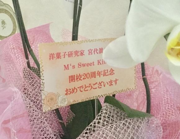 長野県からのサプライズ_e0071324_11165653.jpeg