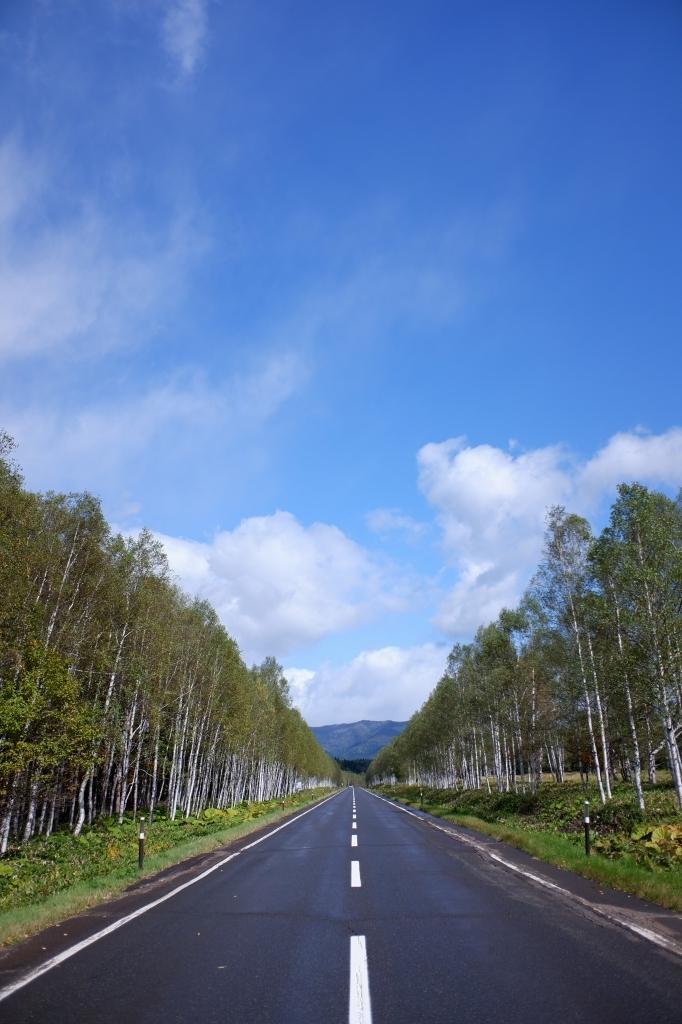 2019北海道ツーリング Day2  9月25日  秋たけなわ 大雪国道_f0050534_07502702.jpg