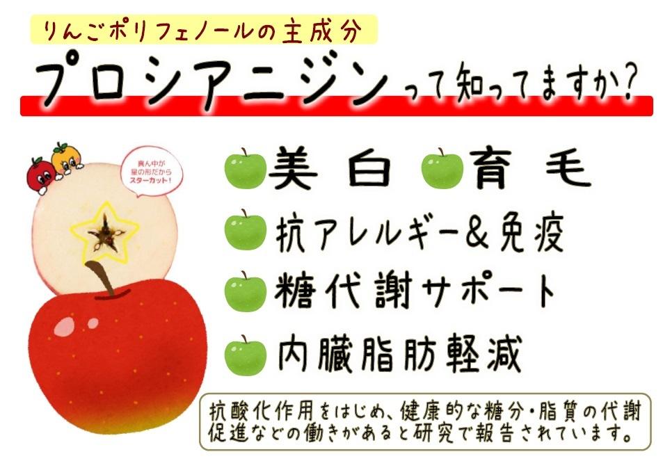 """新しいりんごの食べ方""""スターカット""""&注目の栄養素""""プロシアニジン""""_b0171839_10302777.jpg"""