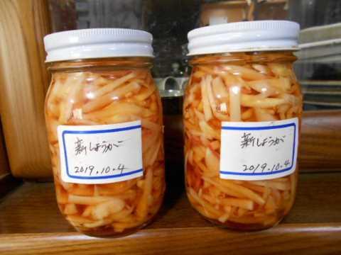 新ショウガの梅酢漬け_f0019498_11035927.jpg