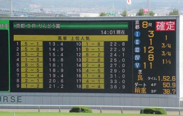 京都競馬場へ行った_e0048413_22284349.jpg