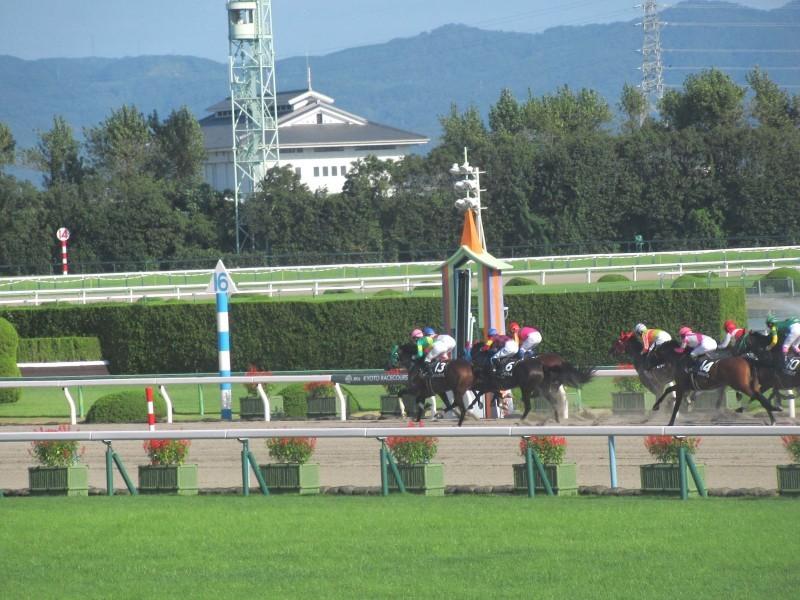 京都競馬場へ行った_e0048413_22284832.jpg
