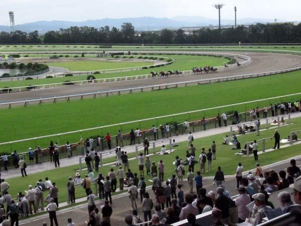 京都競馬場へ行った_e0048413_22285610.jpg