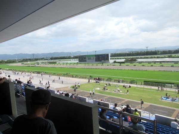 京都競馬場へ行った_e0048413_22290423.jpg
