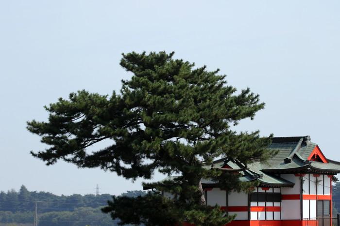 我が町が日本遺産の「里沼」に認定されました_f0239515_171203.jpg
