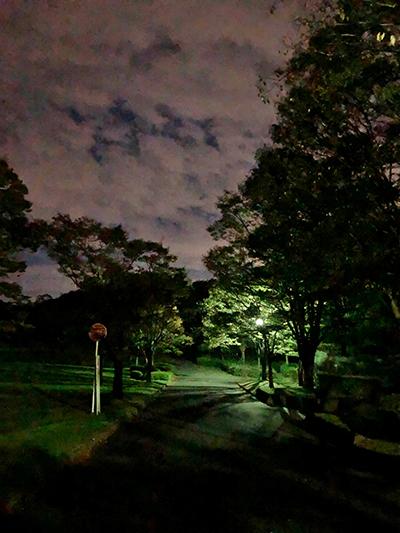 早朝散歩 秋空_e0164563_09554414.jpg