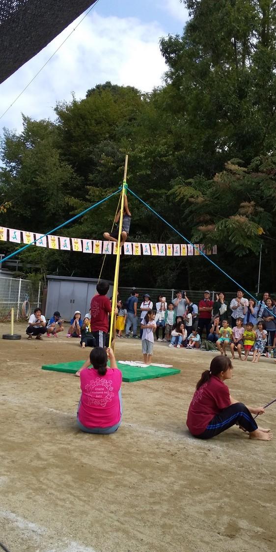 🌞 運動会だ🎵チャッチャチャチャー🎵保育所も幼稚園も認定こども園も🎵どの子も健やかに大きくなあれ🌞_f0061067_14482902.jpg