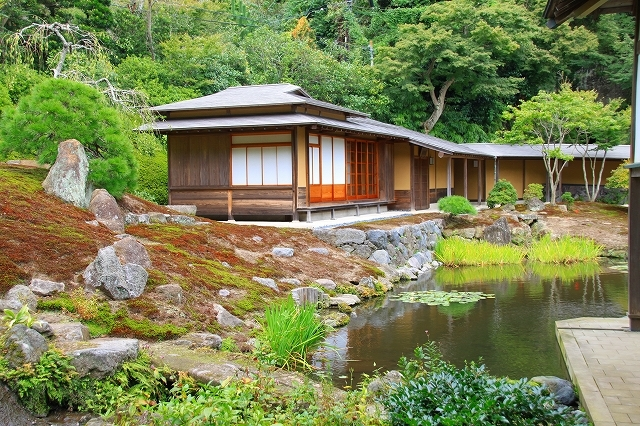 鎌倉の秋の花 海蔵寺 秋の花_f0374092_16320160.jpg