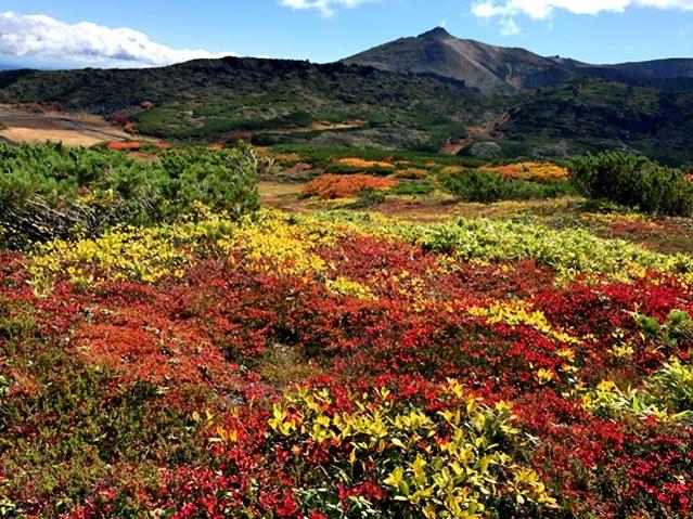 黒岳の紅葉♪ 山頂~お鉢平_f0179404_20072755.jpg