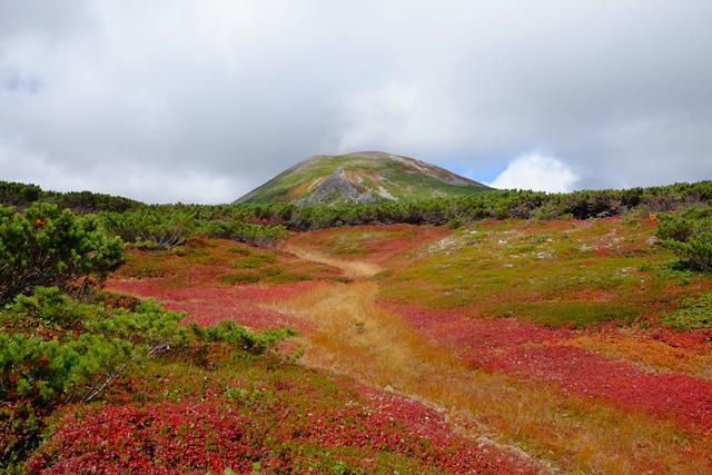 黒岳の紅葉♪ 山頂~お鉢平_f0179404_20230789.jpg