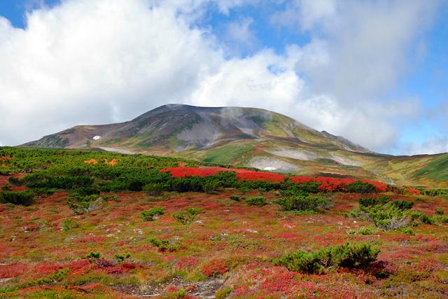 黒岳の紅葉♪ 山頂~お鉢平_f0179404_20233044.jpg