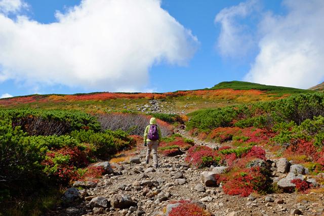 黒岳の紅葉♪ 山頂~お鉢平_f0179404_20235675.jpg
