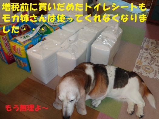 f0121712_00183852.jpg