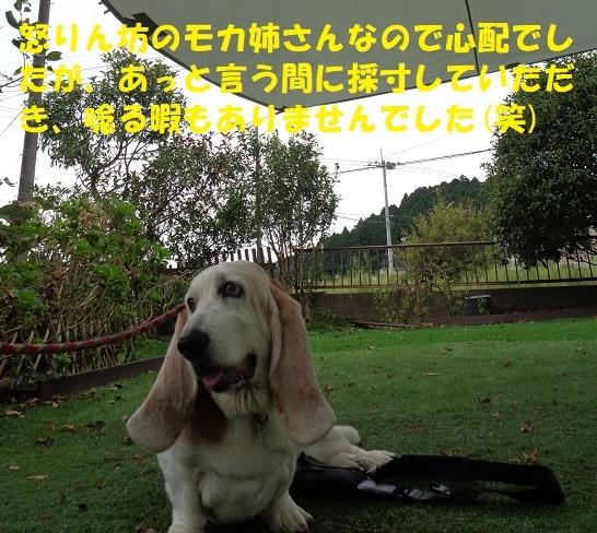 f0121712_00545520.jpg